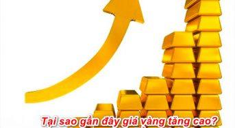 Tại sao gần đây giá vàng tăng cao? Có nên mua thời điểm giờ không?