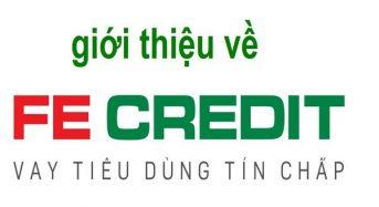 Vay tiền FE Credit không trả có sao không, có phạm tội không?