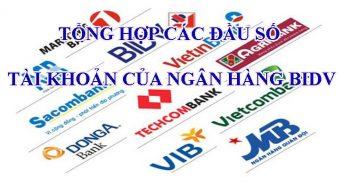 Tổng hợp các đầu số tài khoản của ngân hàng BIDV